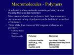 macromolecules polymers