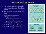 nucleotide monomers