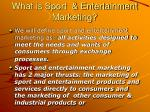 what is sport entertainment marketing2