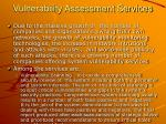 vulnerability assessment services