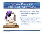 software piracy and intellectual property laws