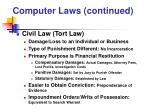 computer laws continued