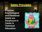 safety principles