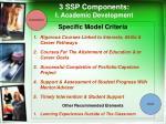 3 ssp components i academic development