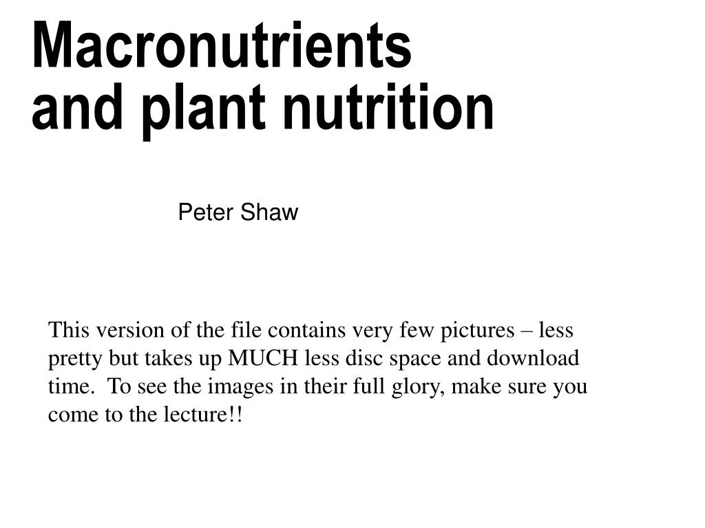 macronutrients and plant nutrition l.