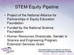 stem equity pipeline
