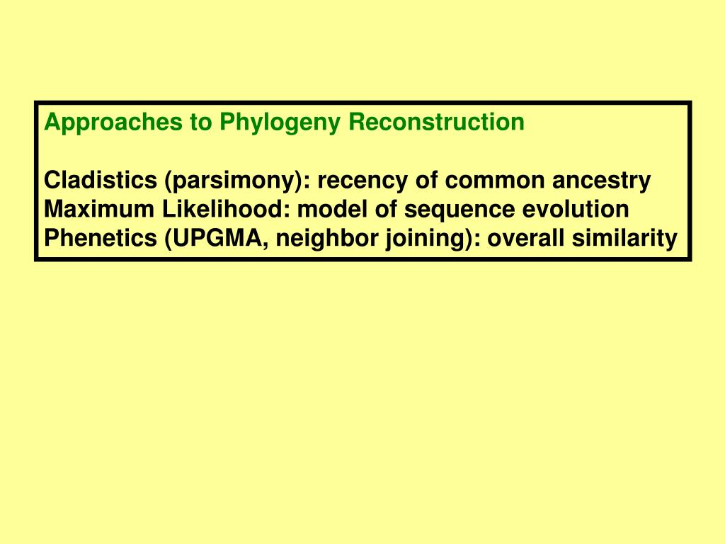 Approaches to Phylogeny Reconstruction