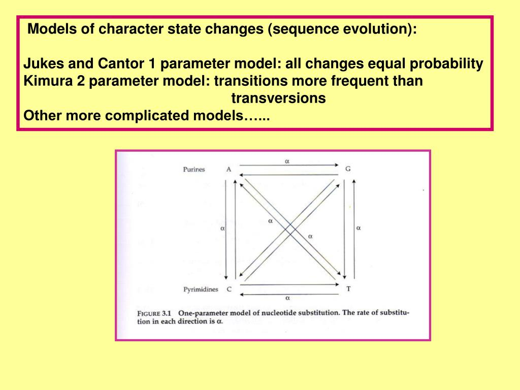 Models of character state changes (sequence evolution):