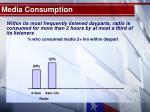 media consumption11