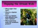 enjoying the stream walk