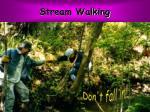 stream walking