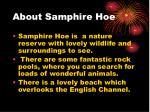 about samphire hoe