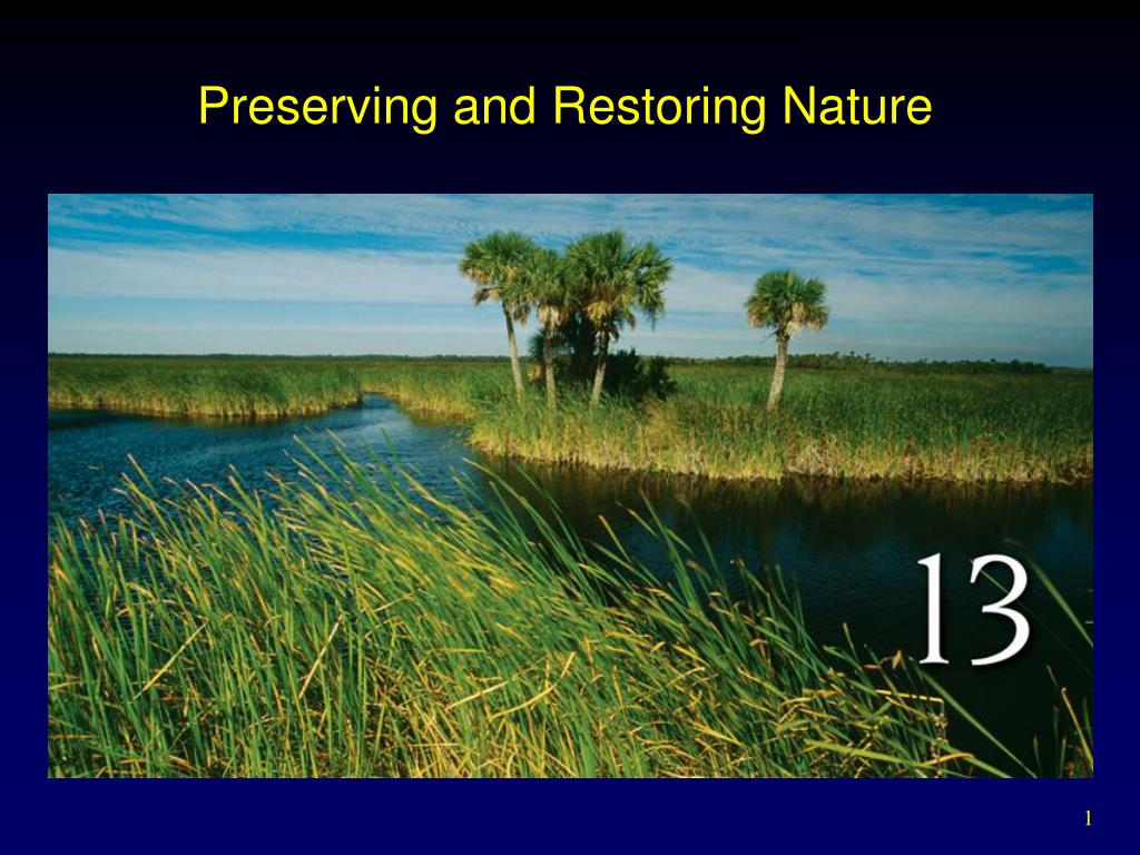 preserving and restoring nature l.
