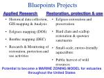 bluepoints projects