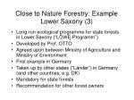 close to nature forestry example lower saxony 3