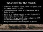 what next for the toolkit