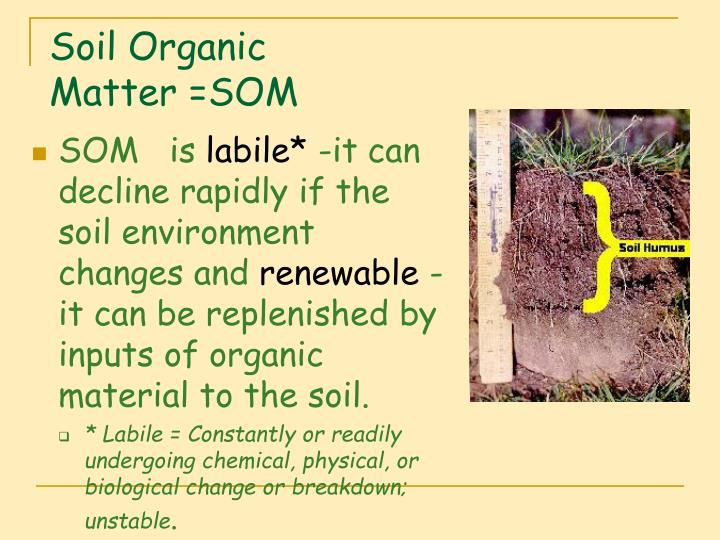 Ppt lecture 10 a soil organic matter som powerpoint for Soil organic matter