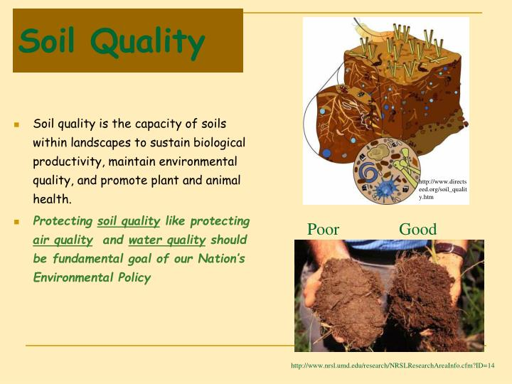 Ppt lecture 10 a soil organic matter som powerpoint for Soil quality pdf