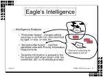 eagle s intelligence29