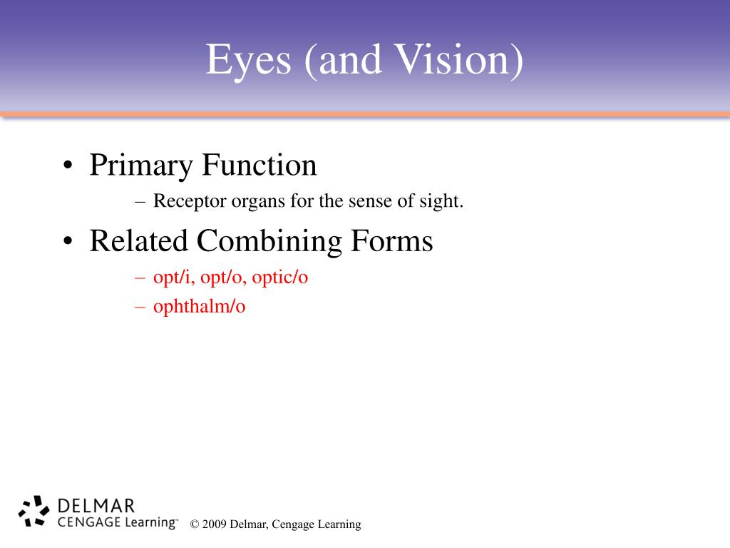 PPT - Chapter 11 PowerPoint Presentation - ID:599376