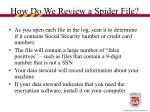 how do we review a spider file20