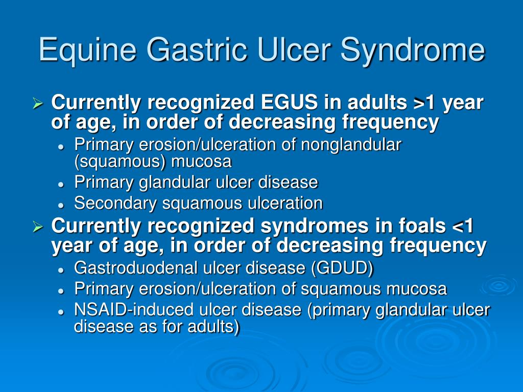 Equine Gastric Ulcer Syndrome