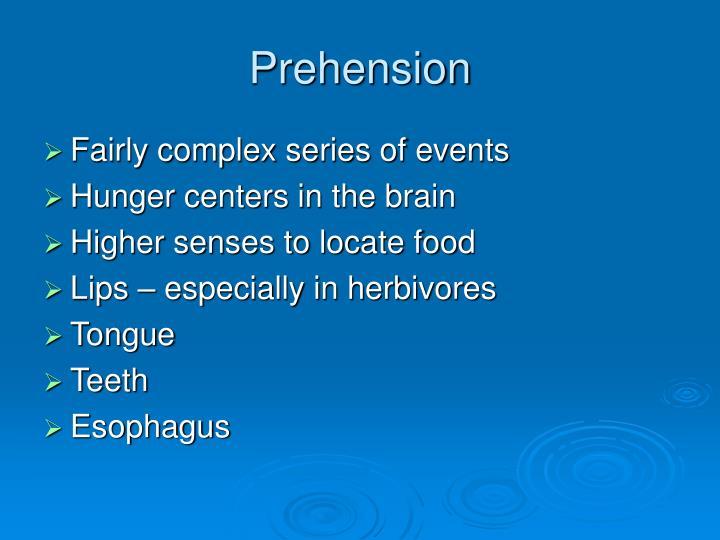 Prehension