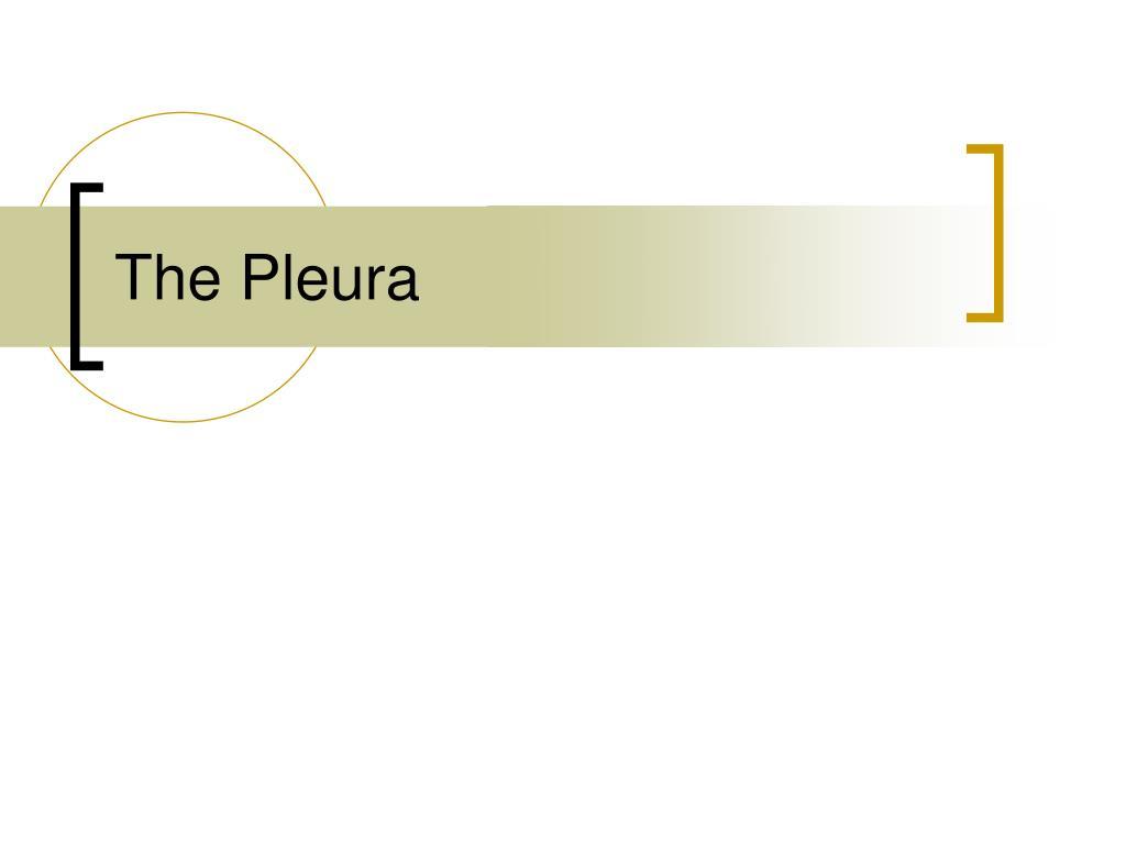 the pleura l.