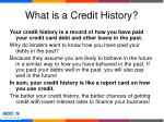 what is a credit history