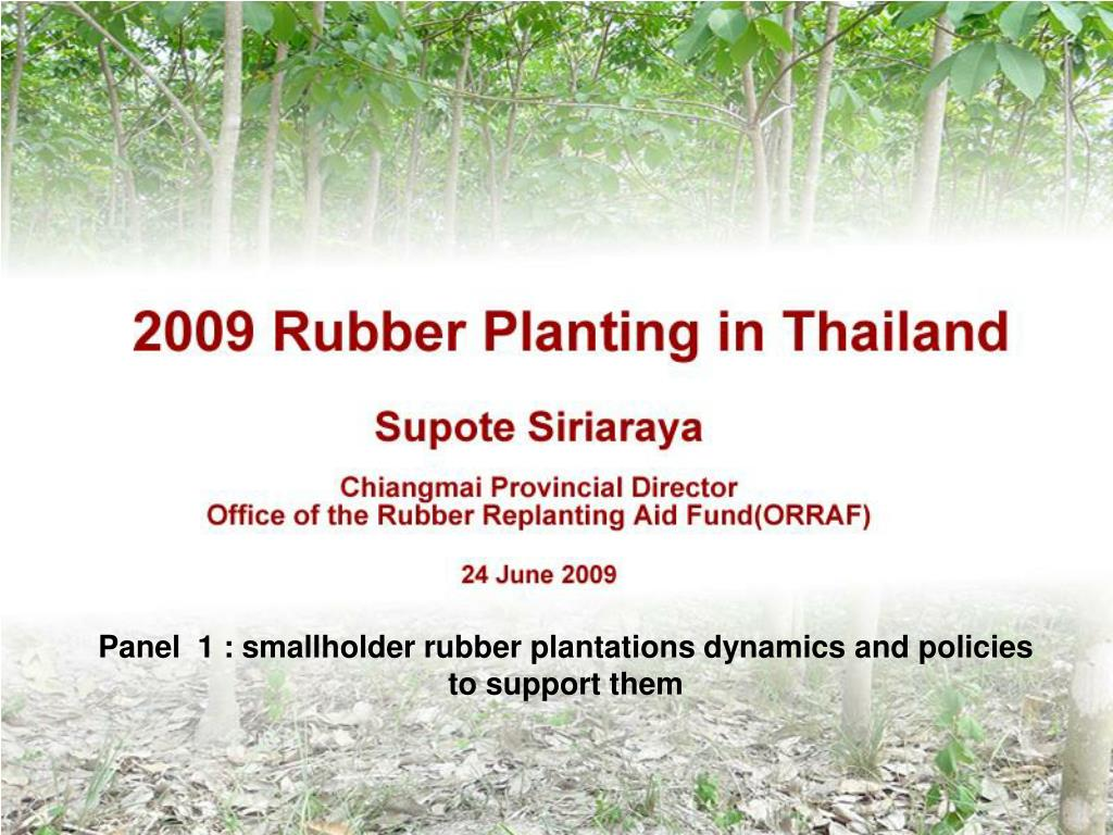 2009 rubber planting in thailand l.