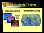 cjis strategic themes