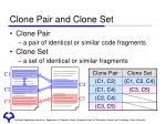clone pair and clone set