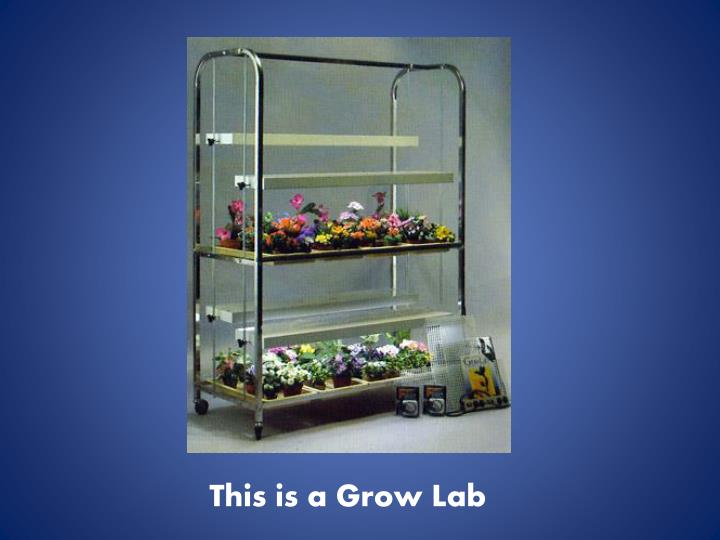 This is a Grow Lab