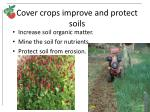 cover crops improve and protect soils