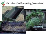 earthbox self watering container