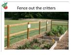 fence out the critters