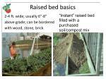 raised bed basics