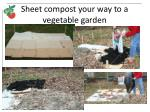 sheet compost your way to a vegetable garden