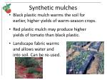 synthetic mulches