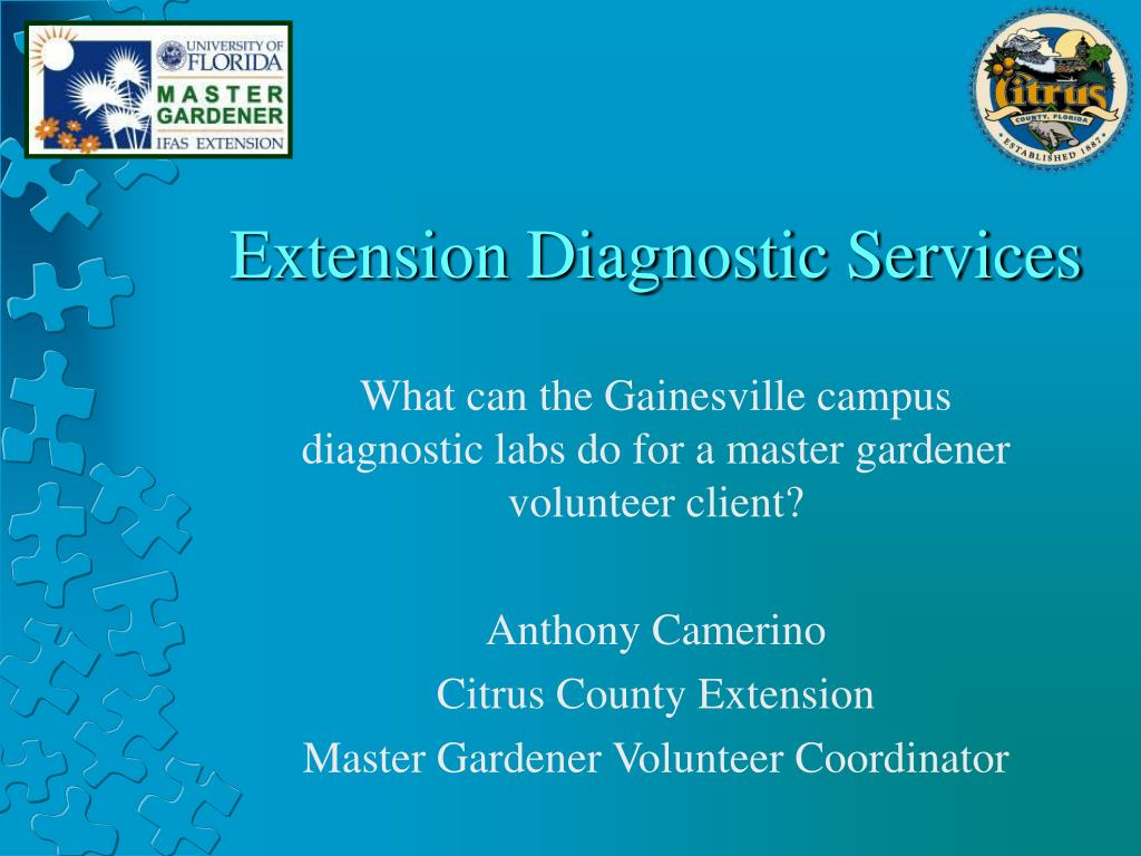 extension diagnostic services l.