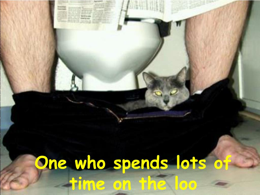 One who spends lots of  time on the loo