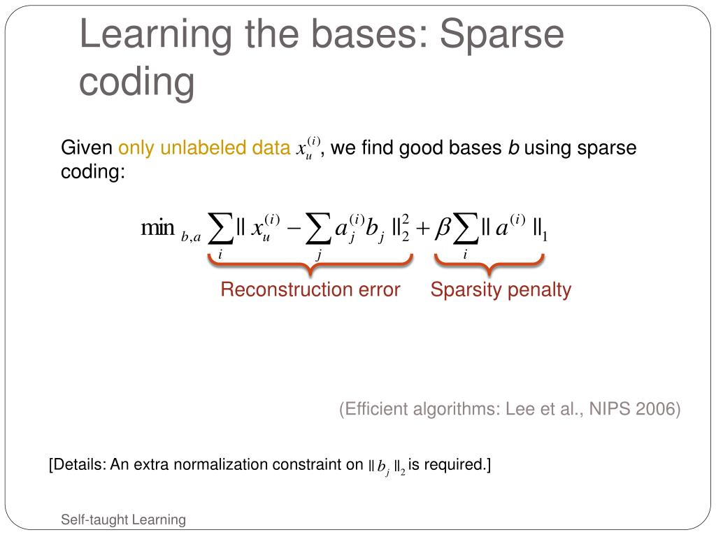 Learning the bases: Sparse coding