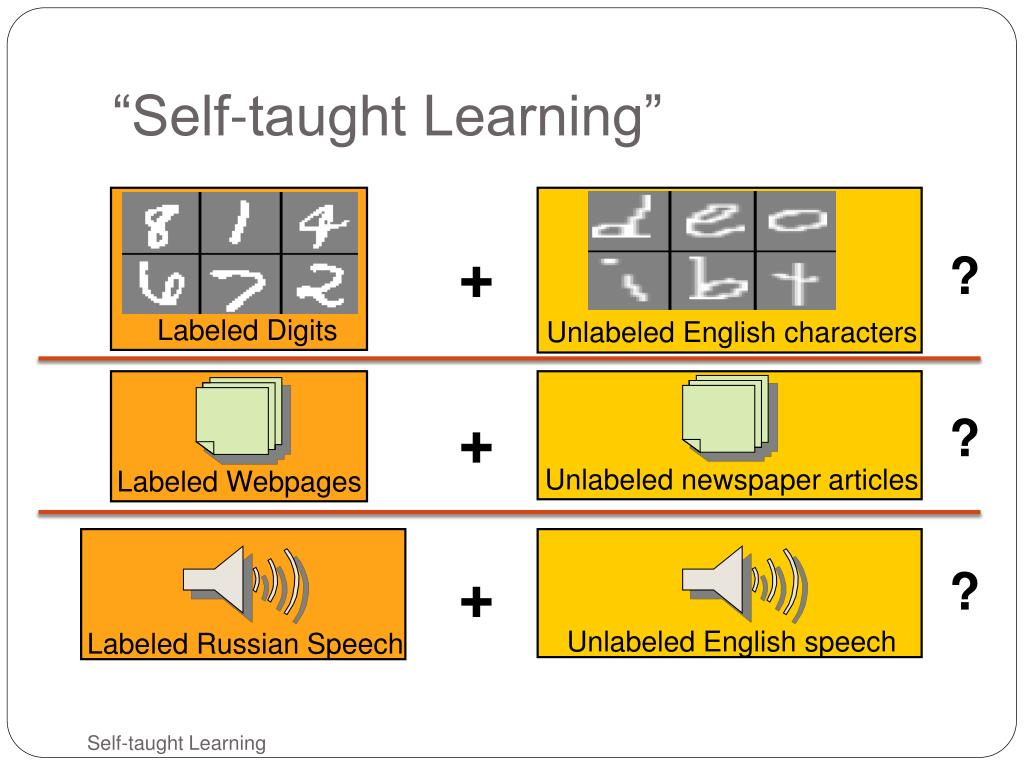 """""""Self-taught Learning"""""""