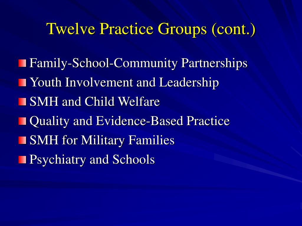 Twelve Practice Groups (cont.)