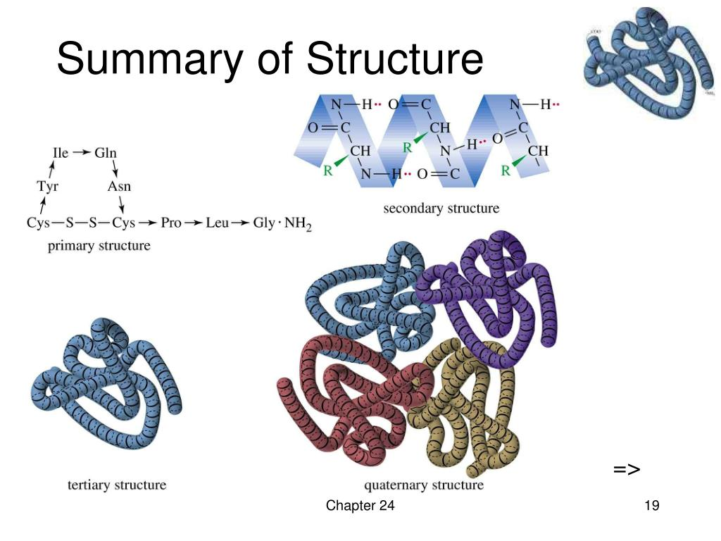 Summary of Structure