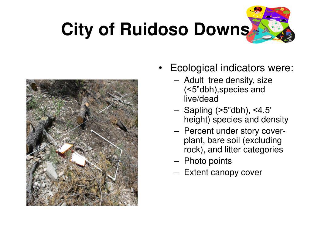 City of Ruidoso Downs