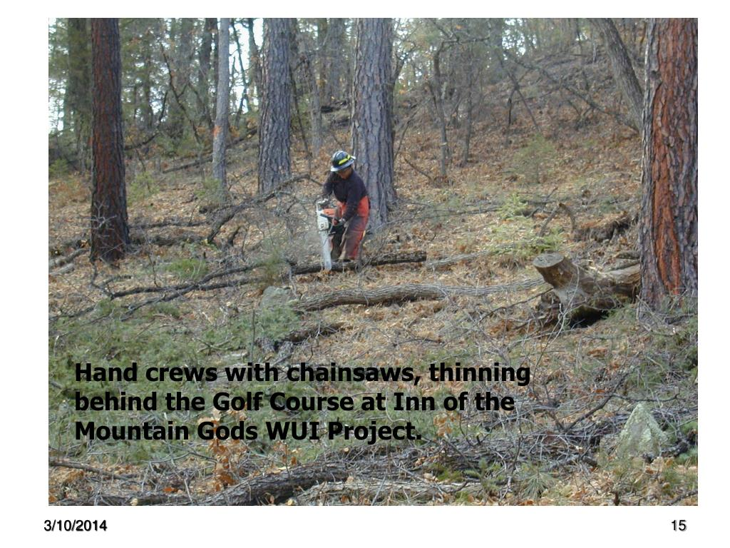 Hand crews with chainsaws, thinning behind the Golf Course at Inn of the Mountain Gods WUI Project.