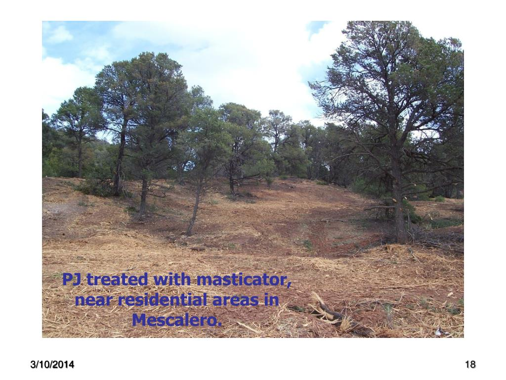 PJ treated with masticator, near residential areas in Mescalero.