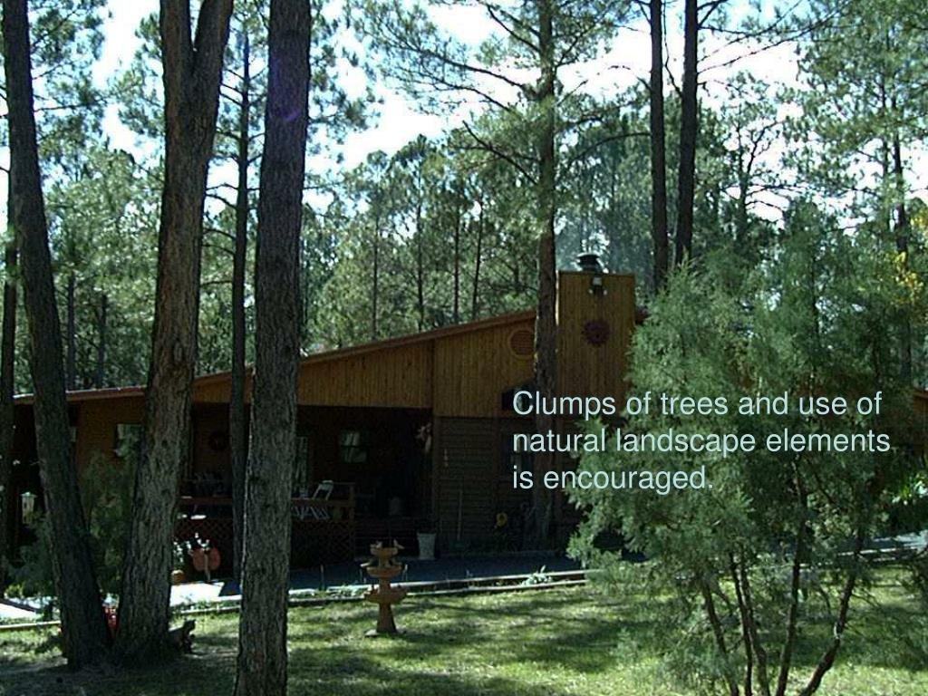 Clumps of trees and use of natural landscape elements is encouraged.
