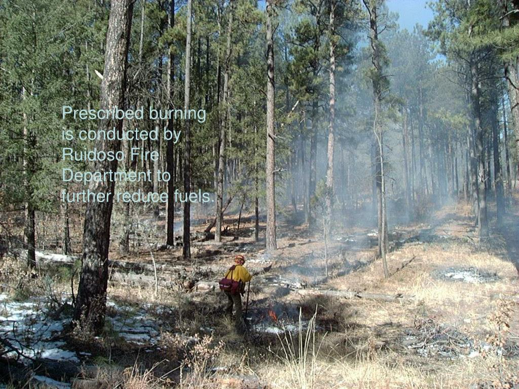 Prescribed burning is conducted by Ruidoso Fire Department to further reduce fuels.
